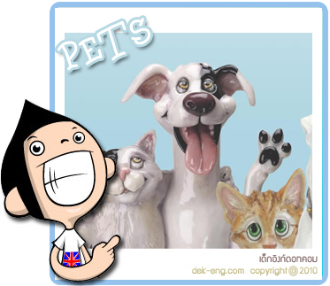 Pets can help you with your health problems (บทความภาษาอังกฤษ)