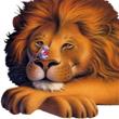 นิทานอีสปภาษาอังกฤษ เรื่อง Lion and Mouse