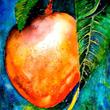 นิทานเรื่องสั้นสอนใจภาษาอังกฤษ เรื่อง The Mango Tree